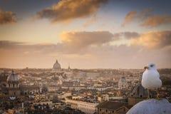 Zonsondergang over Rome Royalty-vrije Stock Foto