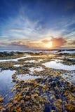 Zonsondergang over rotsachtige kustlijn Stock Afbeelding