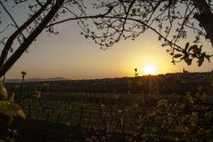 Zonsondergang over Vrbice Stock Fotografie