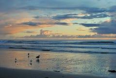 Zonsondergang over Vreedzame oceaan Royalty-vrije Stock Afbeelding