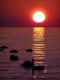 Zonsondergang over water Royalty-vrije Stock Fotografie