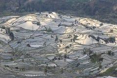 Zonsondergang over YuanYang-rijstterrassen in Yunnan, China, één van de recentste Unesco-Plaatsen van de Werelderfenis stock fotografie