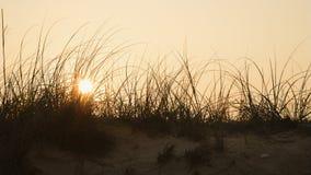 Zonsondergang over zandduin. Royalty-vrije Stock Foto
