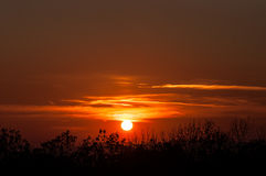 Zonsondergang over zwarte bosmist Royalty-vrije Stock Fotografie