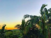 Zonsondergang in paradijs Stock Afbeelding