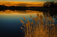 Zonsondergang in Reedy Point Royalty-vrije Stock Afbeeldingen