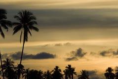 Zonsondergang in Sabah Stock Afbeeldingen
