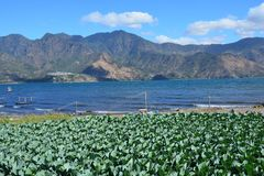 Zonsondergang in San Pedro Laguna Atitlan Lake Guatemala stock fotografie