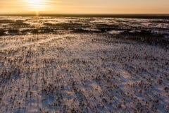 Zonsondergang in Siberië Stock Afbeelding