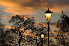 Zonsondergang in stadspark royalty-vrije stock afbeeldingen
