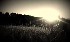 Zonsondergang of sunrises stock afbeelding