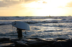 Zonsondergang surfer in Honolulu Royalty-vrije Stock Afbeeldingen