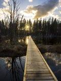 Zonsondergang svinstasjön Royalty-vrije Stock Foto's