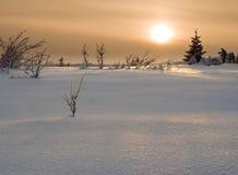 Zonsondergang in toendra Stock Afbeelding