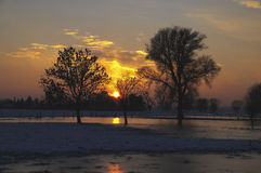 Zonsondergang tussen bomen en met sneeuwoppervlakte Stock Afbeeldingen