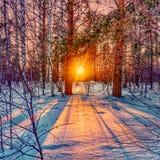 Zonsondergang in ural stock afbeeldingen