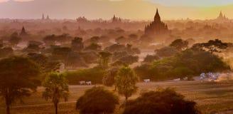 Zonsondergang van een tempel in Bagan, Myanmar Stock Fotografie