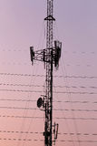 Zonsondergang van Telefoonantenne Stock Foto