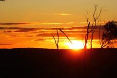 Zonsondergang Victoriaanse Goudvelden Stock Fotografie