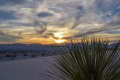 Zonsondergang in Witte Zandwoestijn royalty-vrije stock afbeeldingen