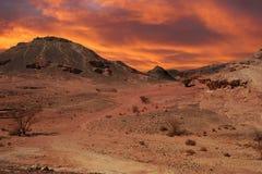 Zonsondergang in woestijn. stock afbeeldingen