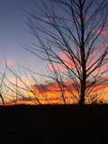 Zonsondergang in Woestijn Stock Fotografie