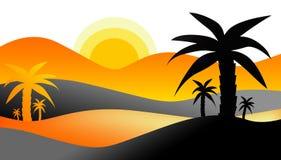 Zonsondergang in Woestijn Stock Afbeeldingen