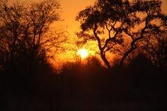 Zonsondergang in Zuid-Afrika Stock Afbeelding