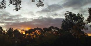 Zonsondergang Zuid-Australië aardig Adelaide Stock Foto