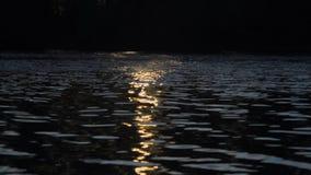 Zonsondergangblitz op de snelle huidige stedelijke rivier, de zonneweg stock videobeelden
