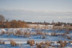 Zonsondergangfoto's van de installaties die in de winter 1014 zijn gestorven stock afbeelding