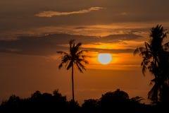 Zonsonderganghemel in sinaasappel en zwarte Stock Foto's