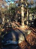 Zonsonderganghout en Rotsen Stock Foto's