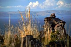 Zonsonderganglicht op het hoge gras en de stenen stock fotografie