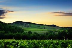 Zonsonderganglichten over heuvel en wijngaarden van Beaujolaisland, Frankrijk Stock Afbeeldingen