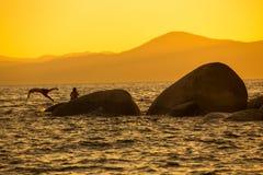 Zonsondergangmeer Tahoe royalty-vrije stock foto