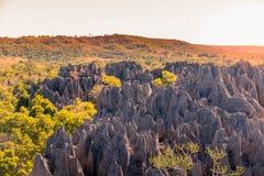 Zonsondergangmening over de unieke aardrijkskunde bij het Tsingy DE Bemaraha Strict Natuurreservaat in Madagascar stock foto's