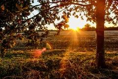 zonsondergangmeningen royalty-vrije stock foto