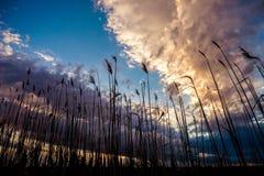 Zonsondergangonweerswolken Royalty-vrije Stock Afbeelding