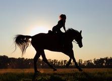 Zonsondergangruiter Royalty-vrije Stock Afbeeldingen