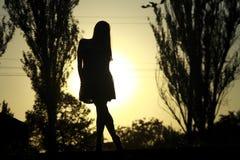 Zonsondergangschoonheid Stock Foto's