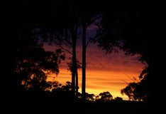 Zonsondergangsilhouet stock foto's