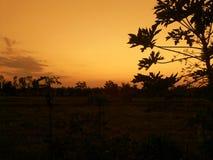 Zonsondergangsilhouet Royalty-vrije Stock Afbeelding