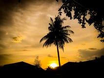 Zonsondergangsilhouet Royalty-vrije Stock Afbeeldingen