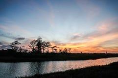 zonsondergangsilhouet in het cipresmoeras royalty-vrije stock fotografie