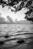 Zonsondergangstrand, Florida stock fotografie