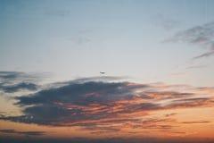 Zonsondergangvlieg stock fotografie