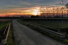 Zonsondergangweg in het platteland Stock Afbeelding