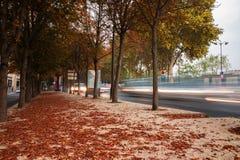 Zonsopgang Autumn Landscape Royalty-vrije Stock Foto