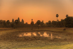 Zonsopgang bij Angkor-tempel Stock Foto